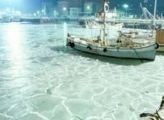 Porto di Cattolica ghiacciato