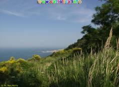 Parco Naturale del San Bartolo