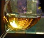 Vini italiani - vino bianco